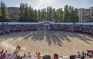 La plaza de toros de Estella, durante un festejo matinal. Fotografía: Montxo A. G.