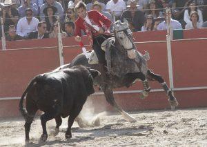 Dom Quixote. Valquirico. 24-II-2018