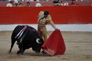 Natural de Juan Bautista en Corella a 'Budista', de Virgen María, el toro más bravo que se ha lidiado en Navarra en lo que llevamos de siglo. Fotografía: Galdona.
