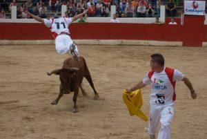 Salto del ángel en un concurso en Aldeanueva de Ebro.