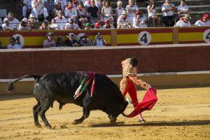 Un moomento de una corrida de toros en Tudela hace dos años.