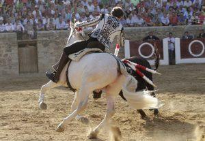 Pablo Hermoso hizo debutar en Medina de Rioseco a 'Albino'.