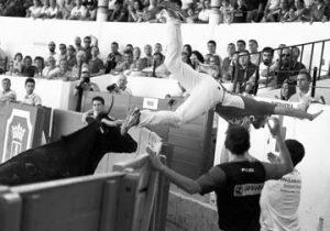 Momento de gran apuro para uno de los recortadores durante el concurso de Peralta. Fotografía: Galdona.