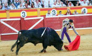 Natural de El Cid, que fue el triunfador del año pasado en Tudela y que regresará este año.
