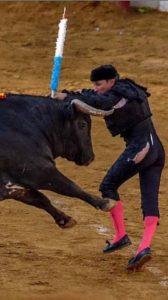 Momento en el que Manolito de los Reyes intenta clavar un par al toro de La Quinta.
