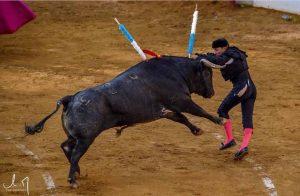 Manolito de los Reyes, con la taleguilla rota, intentando poner un par al de La Quinta.