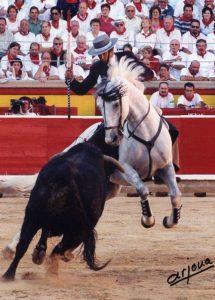 'Roncal' toreando en la plaza de Pamplona.