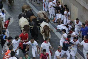 La rapidez ha sido la característica del cuarto encierro de las fiestas de San Fermín.