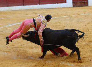 Momento en que el toro 'caza' a David Mora.