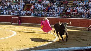 La mayoría de los toros se lo dejaron todo en presencia.