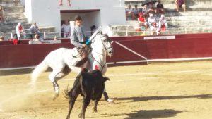 El rejoneador Pablo Donat se ha mostrado voluntarioso en su presentación en Navarra.
