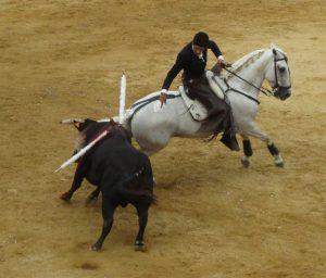 El mexicano Gamero se presentó en Navarra y dejó mejor imagen frene al segundo de su ltoe, de Pilar Población.