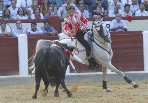Arabito. Valladolid. 9-IX-2018