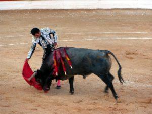 4. Morenito de Aranda. Natural (2)