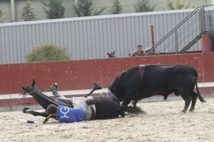 Guillermo ha quedado atrapado debajo de 'Extraño' mientras el toro embestía al caballo.