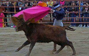 El Moro se lució, entre otros detalles, con un quite por tafalleras. Imagen: Navarra Taurina.
