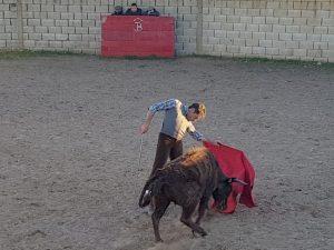 Sánchez Vara 2