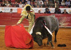 2. Sergio Flores 2