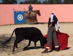 Toñete torea con la diestra a una vaca de Palha.