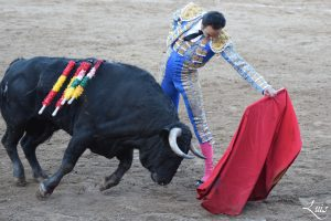 Natural de El Cid, que se presentó el año pasado en Fitero y logró abrir la puerta grande.