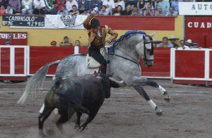 Gallo II. Aguascalientes. 3-III-2019