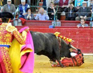 Manolo de los Reyes quedó a merced del utrero. Por fortuna, todo quedó en un susto y en una paliza.