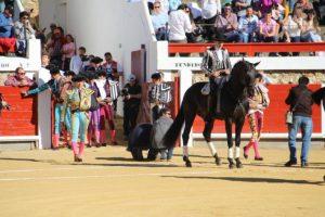 El caballero navarro ha realizado en Brihuega el primer paseíllo de su temporada europea.