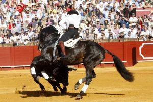 Alquimista. Sevilla. 5-V-2019