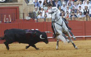 Brindis. Sevilla. 5-V-2019