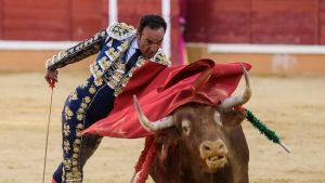 Pase de pecho de El Cid, que toreará en Tudela por última vez.