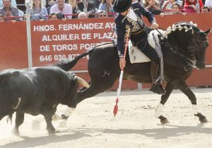 Jíbaro. Villar del Olmo. 19-V-2019