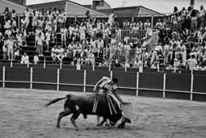Miguel Zazo al natural ante 'Mamarracho', eral premiado con la vuelta al ruedo, al que le cortó las dos orejas. Fotografía: Alberto Galdona.