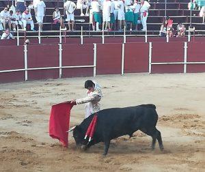 Pase de pecho a un eral de Hermanas Azcona en la plaza de San Adrián el año pasado.