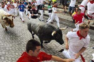 Un toro de Escolar galopa por el callejón, camino de la plaza de toros.