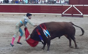 Estocada de Juanito al sexto de la tarde en Tafalla.