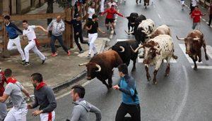 Los toros de Macua no han creado problemas a los corredores. Fotografía: Jesús Caso.