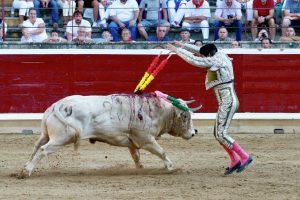 'Alondra', el toro premiado, en banderillas.