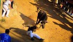 El joven caído  ha tenido suerte; la vaca no ha hecho por él. Fotografía: Enrique Olite.