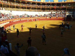 El paseíllo de esta tarde en la plaza de Almería.
