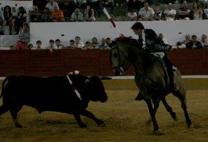 Januca. Aracena. 23-VIII-2019