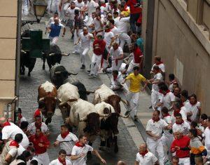 Los cabestros de El Uno encabezroan la manada de José Escolar ya desde Santo Domingo el pasado 9 de julio,