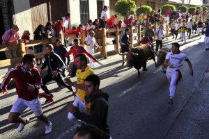 Se pudieron ver bonitas carreras ante los toros de Toropasión.