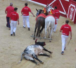 El tercero, 'Caracorta', fue premiado con la póstuma vuelta al ruedo.