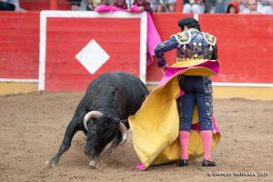 Expósito ejecuta la media en el quite que realizó en Fitero.