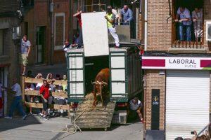 El toro 'Navarrico' en el momento de bajar del camión.