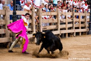 Fiestas de Ablitas. Javier Antón de capa. 16-IX-2019