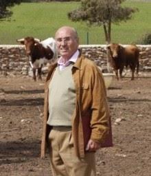 Paco Medina, en su finca, ante reses de El Montecillo.