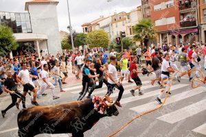 Un momento de la salida del toro de la Asociación Taurina El Torico de Cuerda de Chiva.