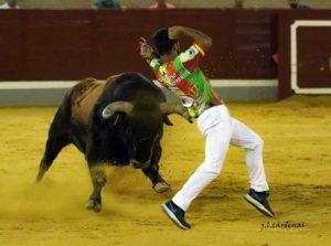 Ajustado recorte ante el toro 'Botijo', de Cebada Gago.