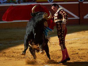 Pase por alto de Finito de Córdoba en la pasada Feria de Tudela.